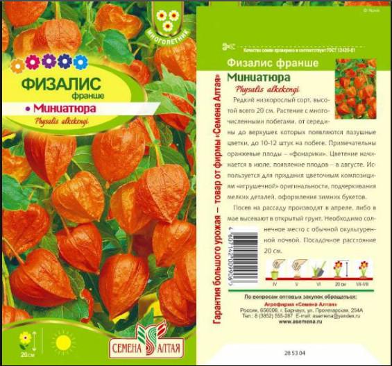 Как сажать физалис семенами 82