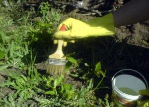 как избавиться от сорняков в огороде