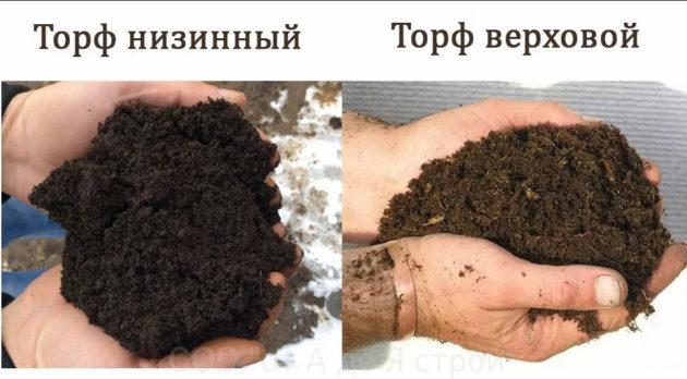 как использовать торф на огороде