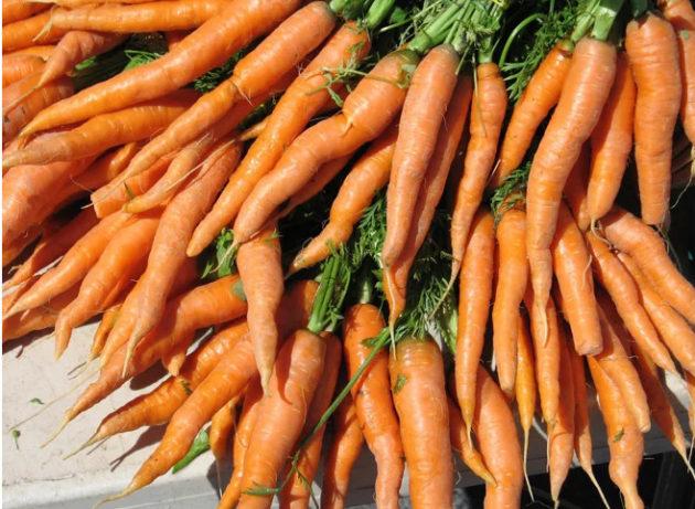 как правильно поливать морковь
