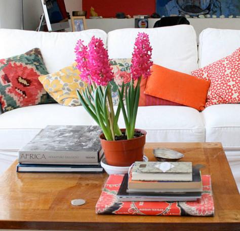 гиацинт в домашних условиях, гиацинт уход в домашних условиях, гиацинт цветение в домашних условиях, гиацинт в домашних условиях после цветения, посадка гиацинтов в домашних условиях, как ухаживать за гиацинтом в домашних условиях, хранить гиацинт домашних условиях