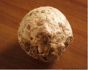 корневой сельдерей выращивание и уход, выращивание корневого сельдерея, уход за корневым сельдереем