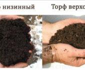 Как использовать торф на огороде и в саду